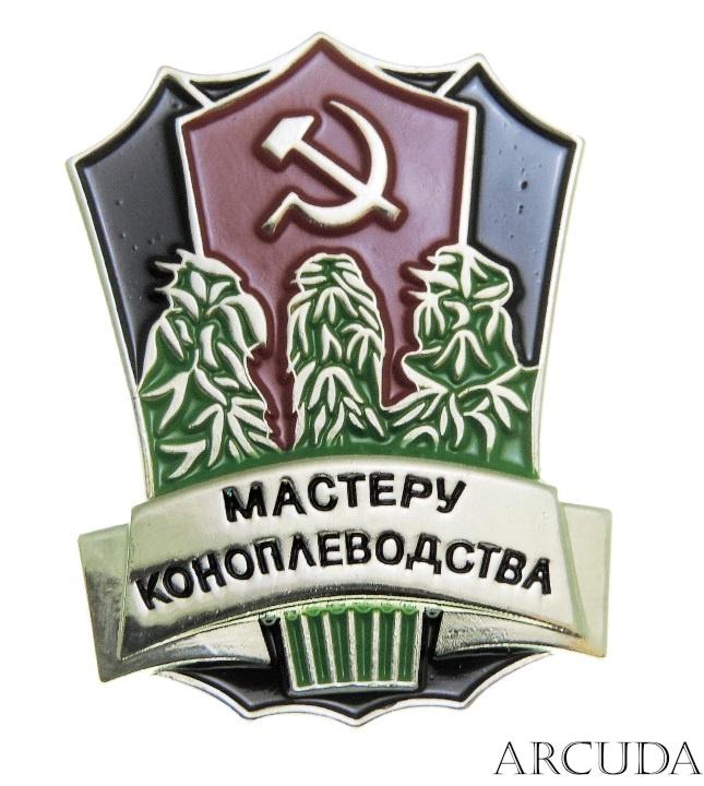 Неизвестный вырастил 33,5 тыс. кустов конопли на Днепропетровщине. Полиция ищет наркофермера - Цензор.НЕТ 8398